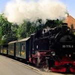 Gruppenreisen Sachsentraeume - Ausflug nach Moritzburg | (c) Kuehne, Sachsenträume